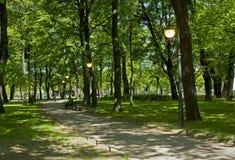 Άνοιξη στο πάρκο πόλεων Στοκ εικόνες με δικαίωμα ελεύθερης χρήσης