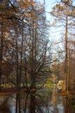 Άνοιξη στο πάρκο πόλεων στο Μιλάνο, Ιταλία Στοκ φωτογραφίες με δικαίωμα ελεύθερης χρήσης