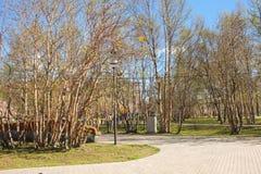 Άνοιξη στο πάρκο Στοκ φωτογραφία με δικαίωμα ελεύθερης χρήσης