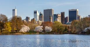 Άνοιξη στο Central Park, πόλη της Νέας Υόρκης Στοκ Εικόνες