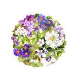 Άνοιξη, σχέδιο θερινών κύκλων - λουλούδια λιβαδιών, πεταλούδες Υδατόχρωμα Στοκ Εικόνες