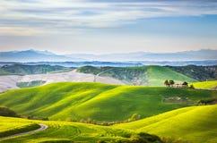 Άνοιξη της Τοσκάνης, κυλώντας λόφοι στο ηλιοβασίλεμα Αγροτικό landscap Volterra Στοκ Εικόνες