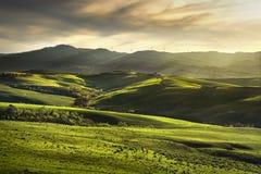 Άνοιξη της Τοσκάνης, κυλώντας λόφοι στο ηλιοβασίλεμα τοπίο αγροτικό Πράσινος Στοκ Φωτογραφία