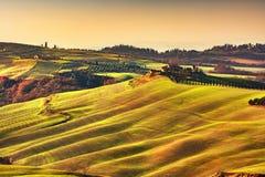Άνοιξη της Τοσκάνης, κυλώντας λόφοι στο ηλιοβασίλεμα τοπίο αγροτικό Πράσινος Στοκ φωτογραφία με δικαίωμα ελεύθερης χρήσης