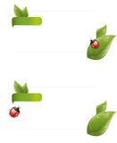 άνοιξη φύλλων φακέλων ladybug ελεύθερη απεικόνιση δικαιώματος