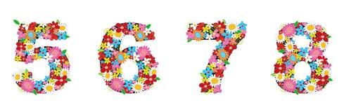 άνοιξη 5678 αριθμών λουλουδ& Στοκ Εικόνα