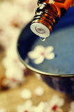 Άνοιξη aromatherapy Στοκ εικόνα με δικαίωμα ελεύθερης χρήσης