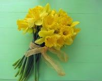 Άνοιξη daffodils Στοκ Φωτογραφία