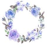 Άνοιξη Watercolor γύρω από το στεφάνι με τα μπλε τριαντάφυλλα Στοκ Εικόνες