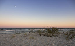 Άνοδος φεγγαριών στην παραλία Vadu Στοκ εικόνα με δικαίωμα ελεύθερης χρήσης
