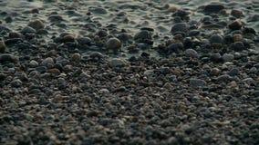 άντεξε παλιρροιακό απόθεμα βίντεο