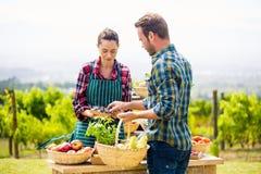 Άνδρας που αγοράζει τα οργανικά λαχανικά από τη γυναίκα στο αγρόκτημα Στοκ εικόνα με δικαίωμα ελεύθερης χρήσης