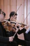 Άνδρες σπουδαστές που παίζουν το βιολί Στοκ εικόνες με δικαίωμα ελεύθερης χρήσης