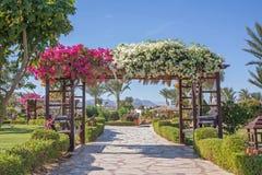 Άξονας λουλουδιών στην αλέα Στοκ εικόνα με δικαίωμα ελεύθερης χρήσης