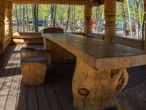 Άξονας σε ένα πάρκο των κούτσουρων Στοκ Εικόνες