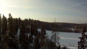 Άποψη άνωθεν του χειμερινού τοπίου απόθεμα βίντεο