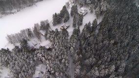 Άποψη άνωθεν του χειμερινών δάσους και του σπιτιού στην άκρη απόθεμα βίντεο