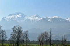 Άποψη Άλπεων από Vaduz - το Λιχτενστάιν Στοκ Φωτογραφία