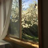 Άποψη έξω ένα παράθυρο κρεβατοκάμαρων Στοκ Εικόνα