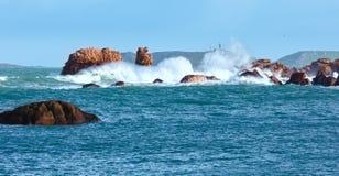 Άποψη ακτών Tregastel (Βρετάνη, Γαλλία) Στοκ φωτογραφία με δικαίωμα ελεύθερης χρήσης