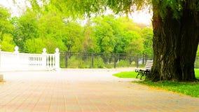 Άποψη αλεών όχθεων ποταμού πάρκων άνοιξη φιλμ μικρού μήκους