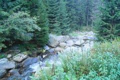 Άποψη από τα βουνά Fagaras, Τρανσυλβανία, Ρουμανία Στοκ φωτογραφία με δικαίωμα ελεύθερης χρήσης