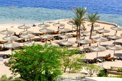 Άποψη από την κορυφή σε μια όμορφη αμμώδη παραλία με τους αργοσχόλους ήλιων, τα κρεβάτια ήλιων και τις ομπρέλες θαλάσσης στις δια στοκ φωτογραφίες