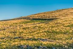 Άποψη από την κορυφή των βουνών με τους πράσινους τομείς χορταριών στοκ εικόνες