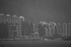 Άποψη από τη δεξαμενή όρμων βροχοπουλιών Χονγκ Κονγκ: μονοχρωματικός στοκ εικόνες