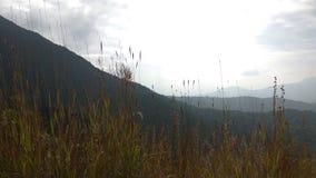 Άποψη από το ίχνος οδοιπορίας Kodachadri στοκ φωτογραφία με δικαίωμα ελεύθερης χρήσης