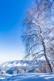 Άποψη από το βουνό Tserkovka στα βουνά Altai το χειμώνα Στοκ Εικόνες