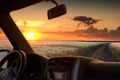 Άποψη από το παράθυρο αυτοκινήτων στον τομέα στο ηλιοβασίλεμα Στοκ Εικόνα