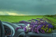 Άποψη από το παράθυρο αυτοκινήτων στους τομείς και την ανθοδέσμη των wildflowers Στοκ φωτογραφία με δικαίωμα ελεύθερης χρήσης