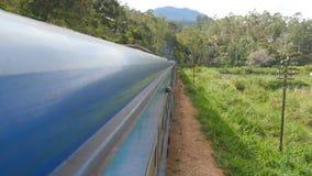 Άποψη από το παράθυρο του παλαιού μπλε τραίνου που κινείται στη φυσική επαρχία στην ηλιόλουστη ημέρα Μεταφορά σιδηροδρόμων επιβατ απόθεμα βίντεο