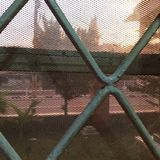 Άποψη από το παράθυρό μας Στοκ φωτογραφία με δικαίωμα ελεύθερης χρήσης