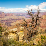 Άποψη από το σημείο Grandview στοκ εικόνα με δικαίωμα ελεύθερης χρήσης