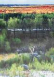 Άποψη από το Hill στο δάσος Στοκ φωτογραφία με δικαίωμα ελεύθερης χρήσης