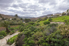 Άποψη από Betancuria Fuerteventura τα Κανάρια νησιά Λας Πάλμας SPA Στοκ εικόνες με δικαίωμα ελεύθερης χρήσης