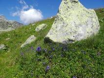 Άποψη από Weissee, Στοκ Φωτογραφία