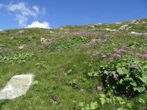 Άποψη από Weissee, Στοκ φωτογραφία με δικαίωμα ελεύθερης χρήσης