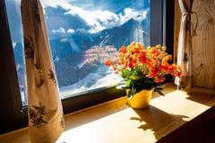 Άποψη βουνών Άλπεων στρωματοειδών φλεβών παραθύρων δοχείων λουλουδιών στοκ φωτογραφίες με δικαίωμα ελεύθερης χρήσης