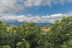 Άποψη βουνών στην επαρχία Στοκ Εικόνες