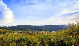 Άποψη βουνών στο γιο της Mae Hong, Ταϊλάνδη στοκ εικόνες
