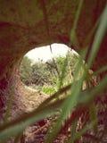 Άποψη, βράχος, χλόη Στοκ φωτογραφίες με δικαίωμα ελεύθερης χρήσης