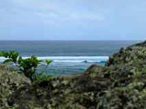 Άποψη για Ινδικό Ωκεανό, βράχος στο πρώτο πλάνο στοκ εικόνα