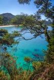 Άποψη διαδρομής στο εθνικό πάρκο του Abel Tasman, Νέα Ζηλανδία Στοκ εικόνα με δικαίωμα ελεύθερης χρήσης