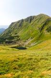 Άποψη ενός απότομου βράχου βουνών με ένα πρώτο πλάνο Θερινό τοπίο των βουνών Στοκ φωτογραφίες με δικαίωμα ελεύθερης χρήσης