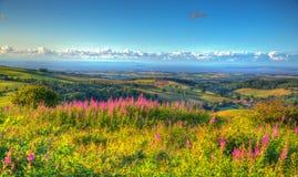 Άποψη επαρχίας Somerset καναλιών του Μπρίστολ από το Quantocks προς το πυρηνικό σημείο σημείου Hinkley Στοκ Εικόνα