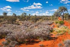 Άποψη ερήμων στοκ φωτογραφία με δικαίωμα ελεύθερης χρήσης