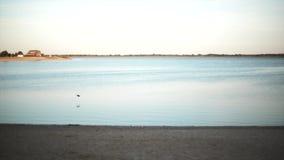 Άποψη θάλασσας στον ορίζοντα απόθεμα βίντεο